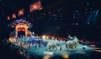 Met pa in het circus