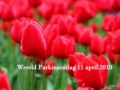 Rond Wereld Parkinson Dag blog 4