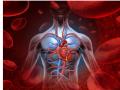 Atriumfibrilleren en het risico op trombose